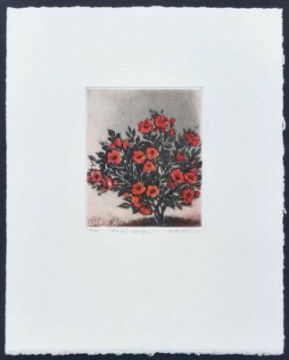 """""""Roses rouges"""" d'Annapia Antonini"""